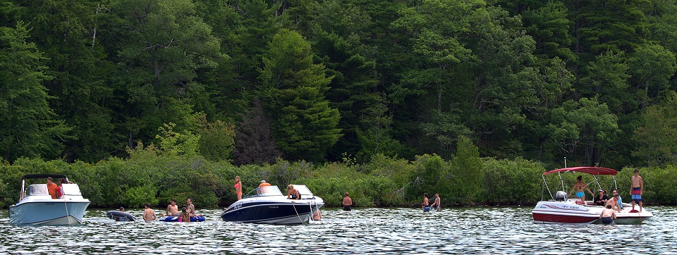 Three boats and a group of people swimming in Log Bay