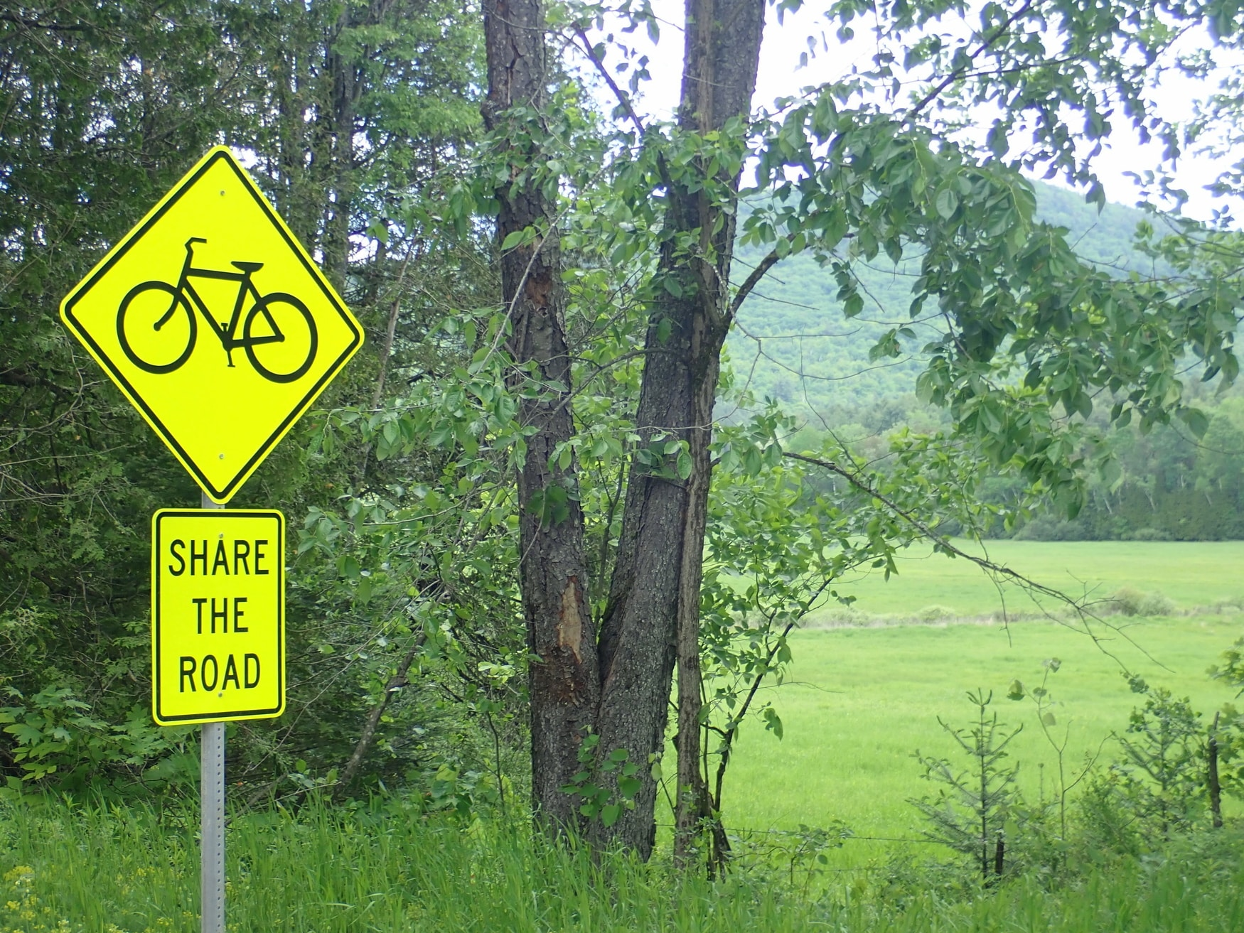 Share the road sign at Beaver Pond intersection